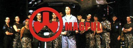 magpul-p2.jpg