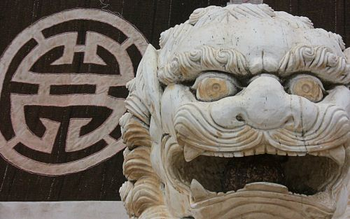 Tibetan Temple Lion The Buddhist Wallpaper Collection