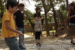 IMG 7985 thumb Kyoto, Nara, Himeji, green tea and finding inner peace